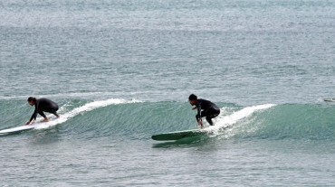 Officials Warn of Accidents at Sea as Surfing Grows in Popularity