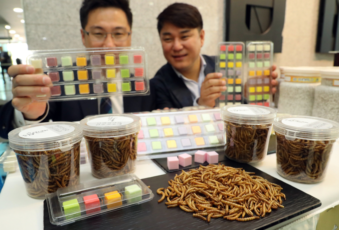Insects Including Meal Beetle and Silkworm Now Classified as Livestock