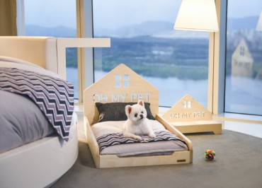 Luxury Hotels in Seoul Welcome Pets in Style
