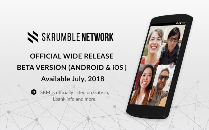 Skrumble Network Using Blockchain Technology to Solve the Data Crisis