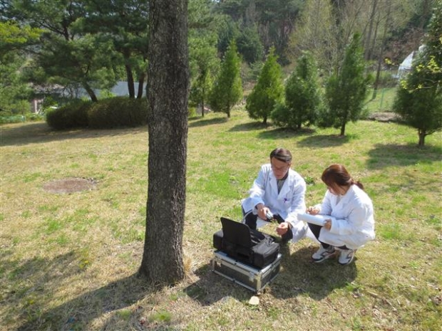 Chuncheon 'Tree Doctors' Help with Diseases, Pests