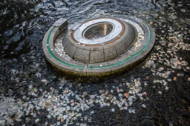 Coins in Wishing Well Fountain to Be Used as Scholarship Fund