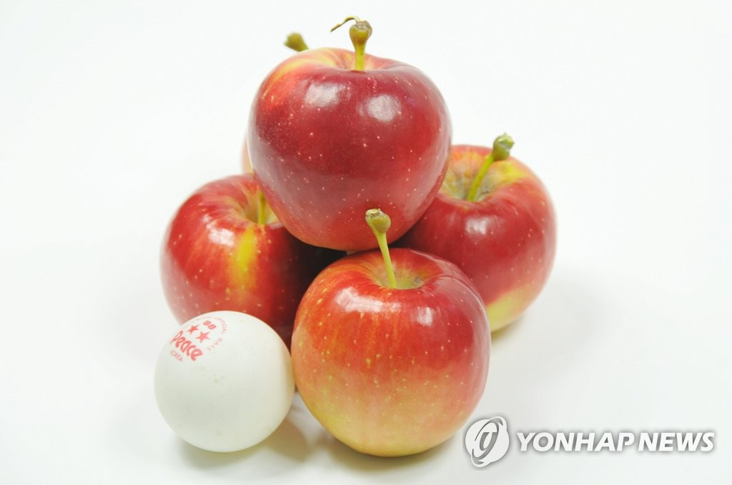The demographic shift and social change dictate how businesses are doing their jobs today. In reflection of this trend, the apples in this picture, slightly larger than a table tennis ball, aim with changing eating habits of the local single-person households who tend to consumer small amount of foods. (Image courtesy of Yonhap)
