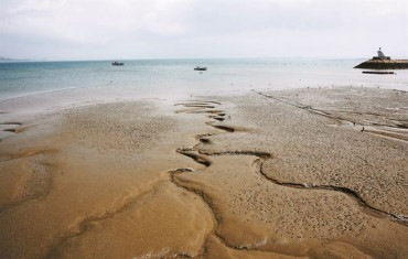 S. Korea to Restore Mudflats on Western Coast by 2023