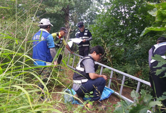 Forestry Investigation Team Cracks Down on Illegal Activities