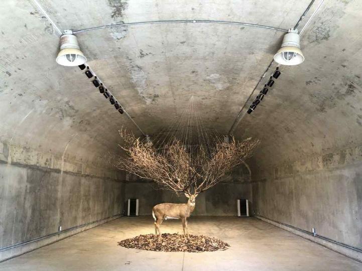"""""""Playground"""" by Kim Myeong-beom. (image: Gyeonggi Tourism Organization)"""