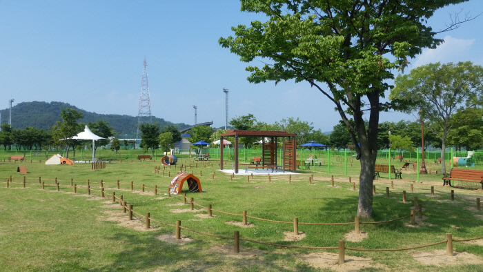 Busan Building a Playground for Pets