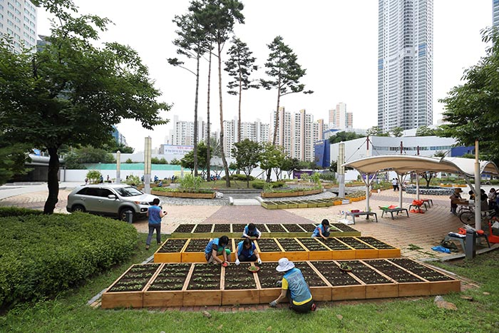 More people are considering urban farming as a leisure pastime activity, as well as a way to harvest safer crops.  (image: Yonhap)