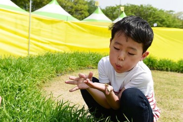 "Jangseong County Plans ""Insect Tourism"""
