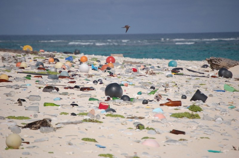Microplastics from Plastic Waste Consumed Via Tap Water