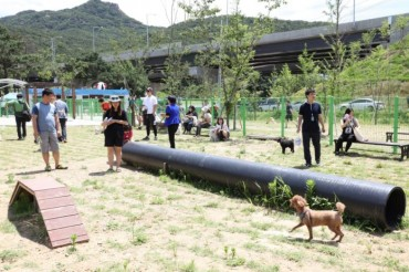Cheongju Dog Park to Open Next Summer