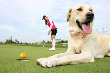 First Golf Tournament that Welcomes Dogs to Open Next Month