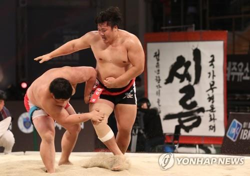 Korean Traditional Wrestling Likely to be Listed as UNESCO Intangible Cultural Asset