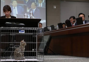 Bengal Cat Appears at Parliamentary Inspection Hearings