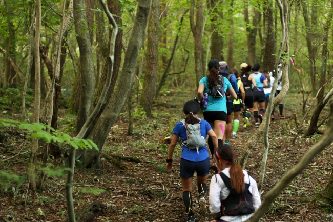 Trail Runners Flock to Jeju for Ultra Marathon