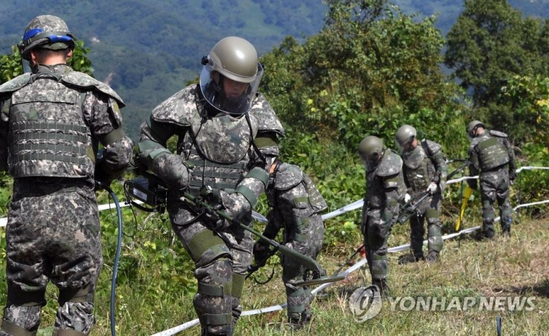 DMZ Demining Operations Lay Groundwork for Peninsula Peace
