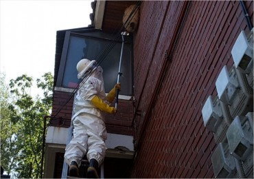 Rescuers Dispatched Most to Remove Hornet Nests in 2015-2017