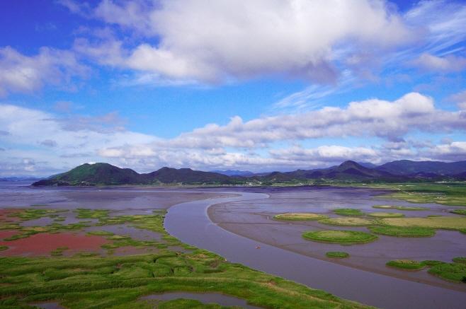 (image: World Heritage Promotion Team of Korean Tidal Flats)