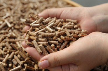 Abandoned Biomass Used to Produce Wood Pellets for Power Generation