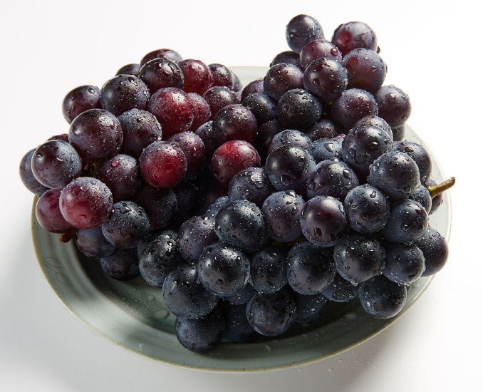 South Korea has only been sending Campbell Early grapes to Australia since 2012. (image: Yonhap)