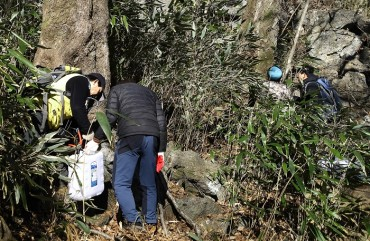 Hadong Residents Extract Bone-friendly Sap from Painted Maple Tree