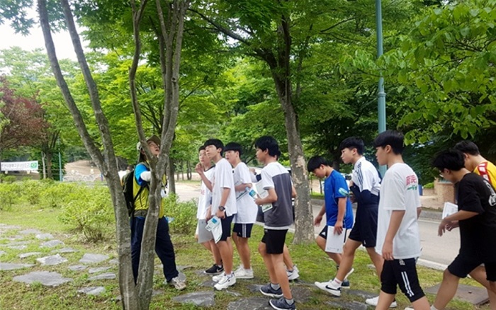 The job does not have any age limit, which makes it very popular among those in their 40s to 60s looking for a second career. (image: Korea Forestry Promotion Institute)