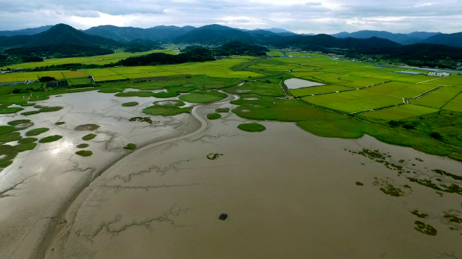 S. Korea Pushes for World Heritage Listing of Southwestern Tidal Flats Again