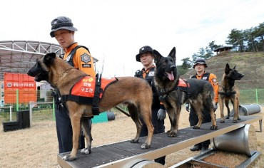 Fire Dogs to Receive Exclusive Treatment from Military Agency