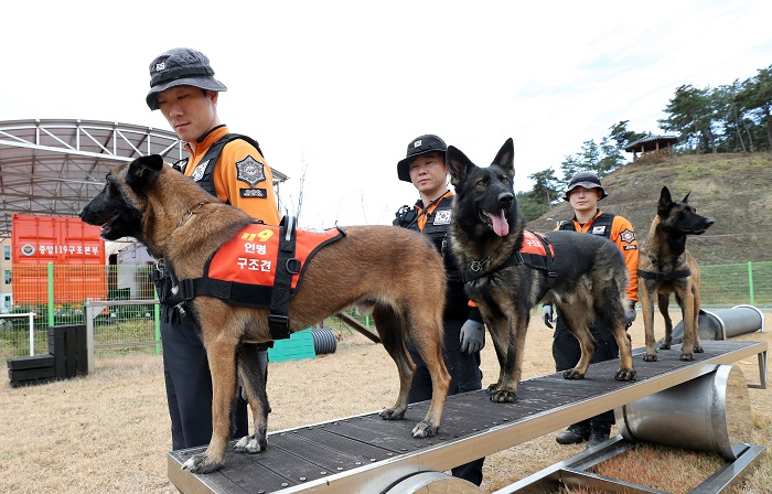 Fire Service Adds Search and Rescue Dogs to All Initial Response Teams