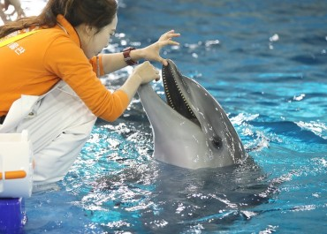 S. Korea to Develop Welfare Standards for Aquarium Animals