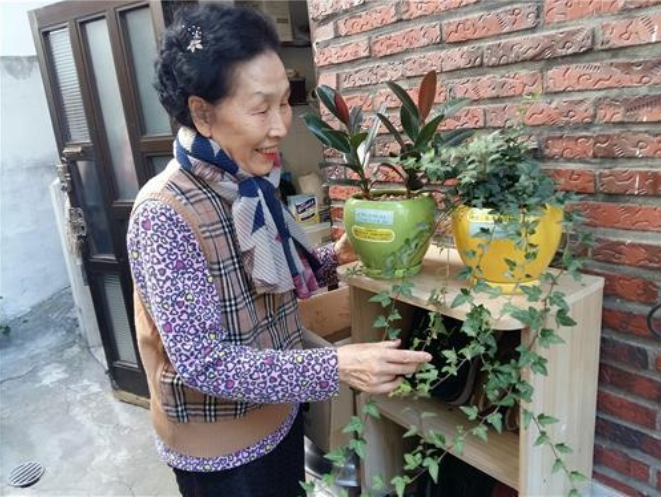 'Pet Plants' for 6,000 Seniors Living Alone in Seoul