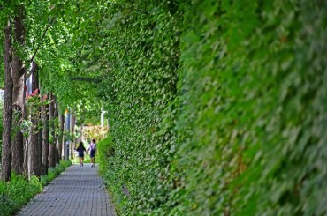 15 Million Trees Will be Planted in Seoul to Reduce Air Pollution By 2022