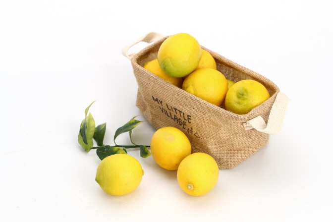 S. Korea to Start Supplying Domestically Grown Lemon Trees