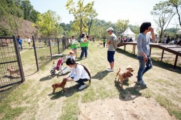 Animals Not Immune to Fine Dust Struggles in S. Korea