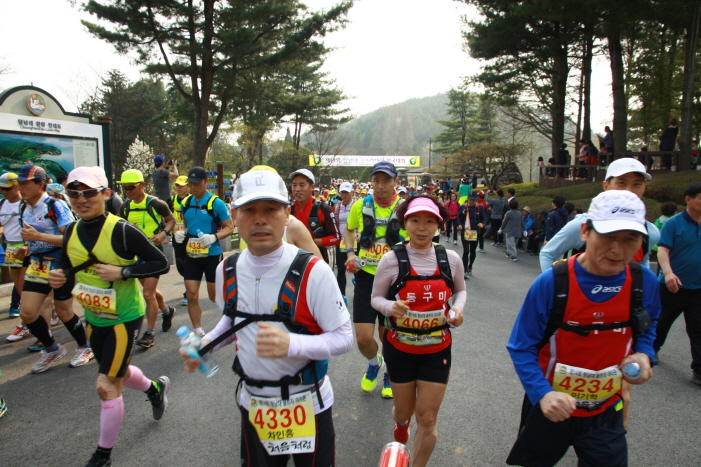 Runners Push Themselves to the Limit at Cheongnamdae Ultra Marathon
