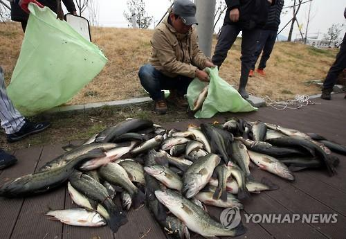 Ulsan Launches Program to Protect Local Ecosystems