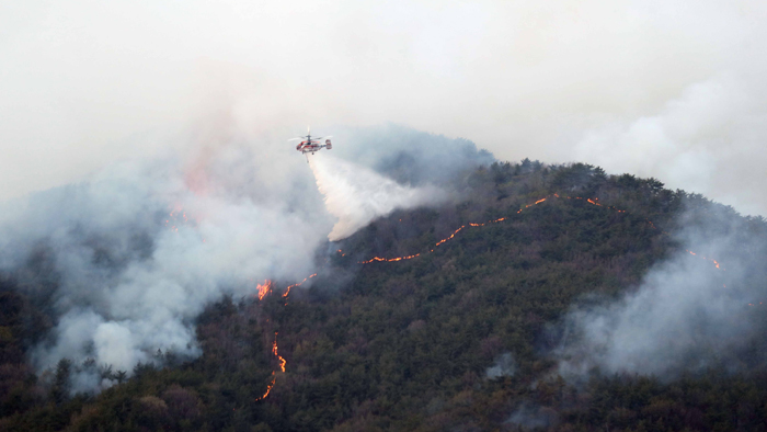 20-hectare Mountain Blaze in Busan Contained After 18 Hours