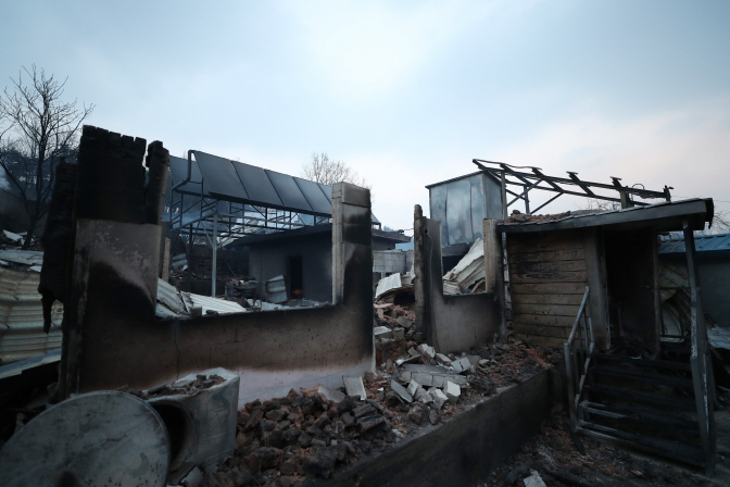 Victims of Gangwon Fire Want Nosy Photographers to Stay Away