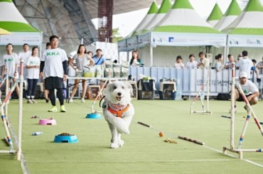 Busan Cinema Center Hosts Pet Film Festival