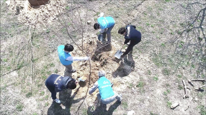 Starting this year, the province will invite all factories in the province to plant 210,000 trees over the next three years with the aim to turn the factories into 'forest plants.' (image: Gyeonggi Provincial Office)