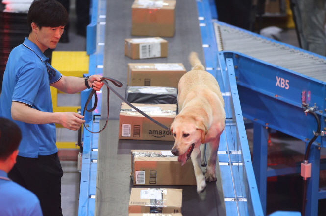 Amid Animal Cruelty Debate, 80 pct of Sniffer Dogs are Cloned: Data