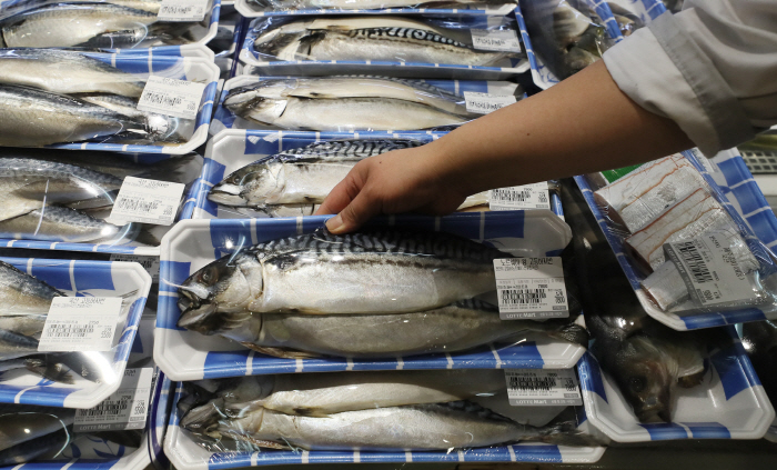 In the past 10 years, Norwegian mackerel have gained as much as 30 percent of the market share in South Korea. (Yonhap)
