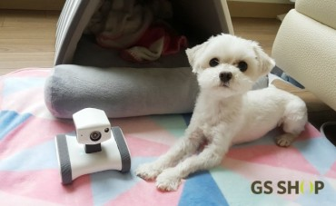 Pet Industry Startups Offer One-hour Delivery, Pet-sitting Services