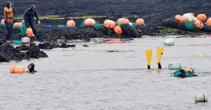 Haenyeo over 70 years of age account for as much as 59 percent of all 3,898 female divers on the island. (Yonhap)