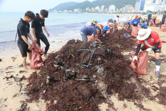 Old fishing nets, construction materials, wood, snack bags, beverage cans, plastic bottles, and plastic bags were found among the massive amount of trash. (Yonhap)