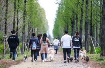 Gangneung's 'Dog Marathon' Promotes Positive Pet Culture