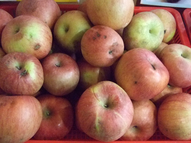 Consumers Embrace 'Ugly Fruit' to Save Money