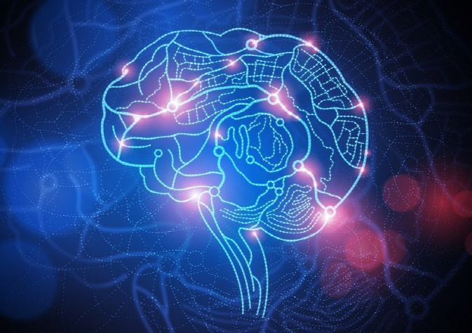Preference for Certain Locations Caused by Astrocytes in the Brain: Study