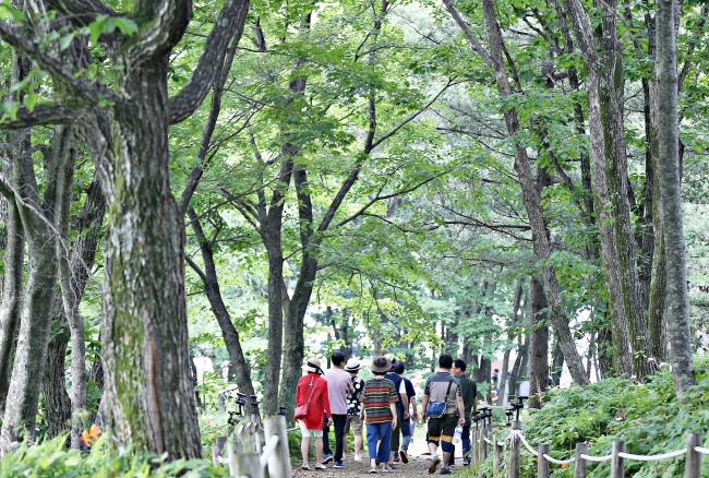 Cool Highlands of Manhangjae Hill Offer Respite from Scorching Summer Heat