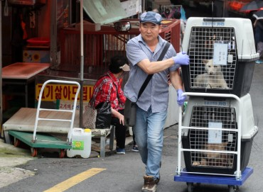 Busan's Gupo Dog Meat Market to Turn into Animal-friendly Space